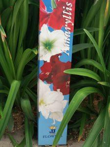 deksel jj flowers